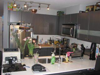 """Photo 4: 313 21009 56 Avenue in Langley: Salmon River Condo for sale in """"CORNERSTONE"""" : MLS®# R2454324"""