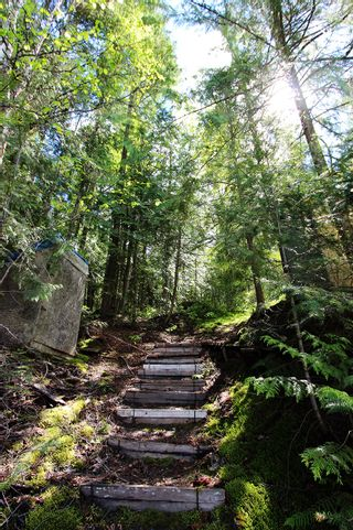 Photo 25: 1706 Blind Bay Road: Blind Bay Vacant Land for sale (South Shuswap)  : MLS®# 10185440