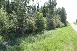 Photo 2: TWP 494 RR 42: Rural Leduc County Rural Land/Vacant Lot for sale : MLS®# E4252228