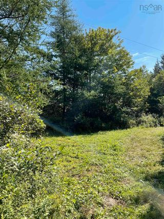 Photo 4: 1373 West Sable Road in Sable River: 407-Shelburne County Vacant Land for sale (South Shore)  : MLS®# 202122222