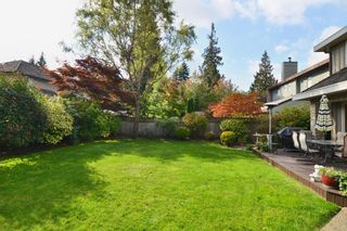 Photo 36: 21098 44 A Ave CEDAR Ridge in Langley: Home for sale : MLS®# F1323545