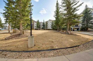 Photo 40: 302 10636 120 Street in Edmonton: Zone 08 Condo for sale : MLS®# E4236396