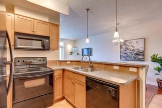 Photo 9: 215 208 Holy Cross SW in Calgary: Mission Apartment for sale : MLS®# A1123191