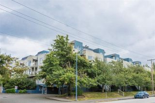 """Main Photo: 124 7800 ST. ALBANS Road in Richmond: Brighouse South Condo for sale in """"SUNNYVALE"""" : MLS®# R2109836"""