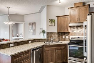 Photo 10: 421 20 Discovery Ridge Close SW in Calgary: Discovery Ridge Apartment for sale : MLS®# A1128023
