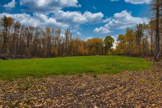 Photo 7: #9 North Pigeon Lake Estates: Rural Wetaskiwin County Rural Land/Vacant Lot for sale : MLS®# E4265016
