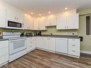 Photo 49: 2096 May Rd in COMOX: CV Comox Peninsula House for sale (Comox Valley)  : MLS®# 813161