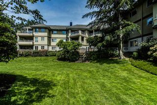 """Photo 16: 306 20120 56 Avenue in Langley: Langley City Condo for sale in """"Blackberry Lane"""" : MLS®# R2084458"""