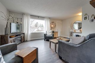 Photo 8: 8907 154 Street in Edmonton: Zone 22 House for sale : MLS®# E4235392