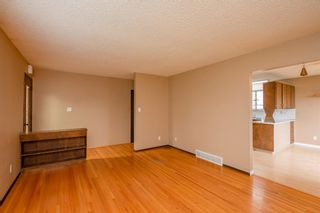 Photo 18: 141 40th Avenue SW in Calgary: Parkhill Detached for sale : MLS®# A1107597