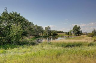 Photo 4: 31180 Woodland Way in Rural Rocky View County: Rural Rocky View MD Detached for sale : MLS®# A1074858