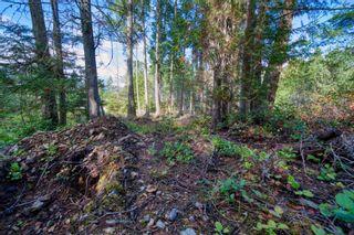 Photo 7: Lot 2 POLLOCK Road in Madeira Park: Pender Harbour Egmont Land for sale (Sunshine Coast)  : MLS®# R2625413