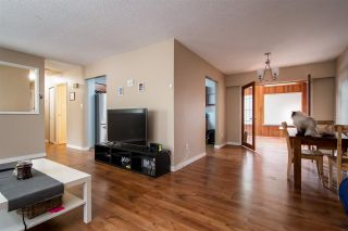 Photo 10: 21806 DOVER Road in Maple Ridge: West Central House for sale : MLS®# R2499960