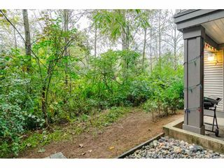 "Photo 43: 130 27358 32 Avenue in Langley: Aldergrove Langley Condo for sale in ""Willow Creek Estates III"" : MLS®# R2410157"