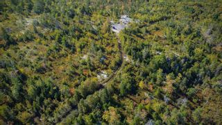 Photo 8: 2014 Myra Road in Porters Lake: 31-Lawrencetown, Lake Echo, Porters Lake Vacant Land for sale (Halifax-Dartmouth)  : MLS®# 202125407