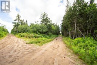 Photo 13: Lots Brooklyn RD in Midgic: Vacant Land for sale : MLS®# M136510