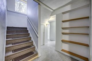 Photo 24: 919 MIDRIDGE Drive SE in Calgary: Midnapore Detached for sale : MLS®# A1016127