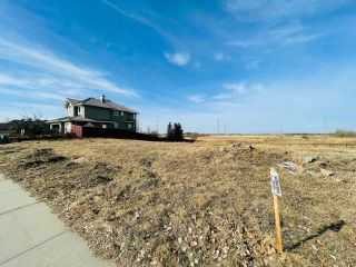 Photo 3: 738 52304 RGE RD 233: Rural Strathcona County Rural Land/Vacant Lot for sale : MLS®# E4236967