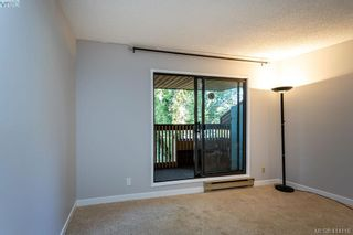 Photo 20: 209 1518 Pandora Ave in VICTORIA: Vi Fernwood Condo for sale (Victoria)  : MLS®# 821349