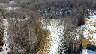 Photo 4: 54419 R.R. 14: Rural Lac Ste. Anne County Rural Land/Vacant Lot for sale : MLS®# E4233036