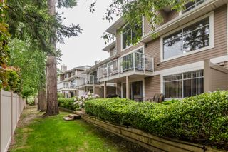 """Photo 45: 70 2500 152 Street in Surrey: King George Corridor Townhouse for sale in """"Peninsula Village"""" (South Surrey White Rock)  : MLS®# R2270791"""