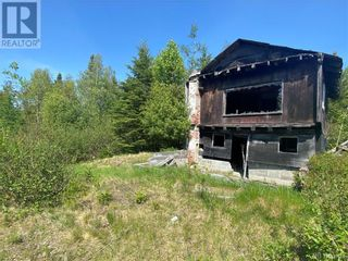 Photo 29: 74.62 Acres Route 127 in Bayside: Vacant Land for sale : MLS®# NB058351