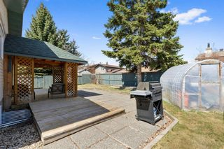 Photo 29: 123 Deer Lane Road SE in Calgary: Deer Run Detached for sale : MLS®# A1100735