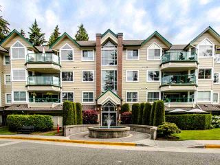 Photo 18: 202 3680 BANFF COURT in North Vancouver: Northlands Condo for sale : MLS®# R2480368