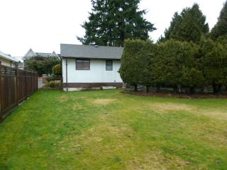 Photo 19: 12071 84 Avenue in Surrey: Home for sale : MLS®# F1403965