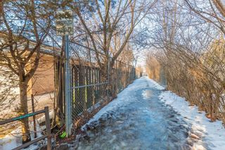 Photo 5: 2951 Kingston Road in Toronto: Cliffcrest House (Bungalow) for sale (Toronto E08)  : MLS®# E5215618