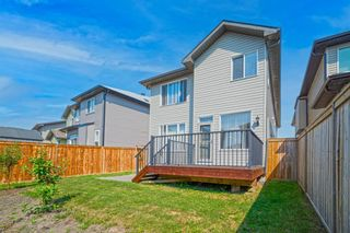 Photo 30: 31 SKYVIEW SHORES Link in Calgary: Skyview Ranch Detached for sale : MLS®# A1130937
