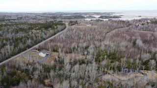 Photo 3: Lot 4 Powell Road in Little Harbour: 108-Rural Pictou County Vacant Land for sale (Northern Region)  : MLS®# 202106883