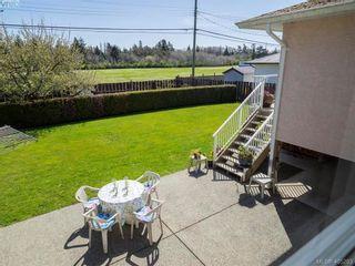 Photo 4: 3489 Henderson Rd in VICTORIA: OB Henderson House for sale (Oak Bay)  : MLS®# 805345