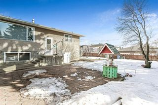 Photo 43: 1314 35 Street SE in Calgary: Albert Park/Radisson Heights Detached for sale : MLS®# A1081075