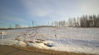 Photo 6: 63 25527 Twp Road 511A Road: Rural Parkland County Rural Land/Vacant Lot for sale : MLS®# E4235764