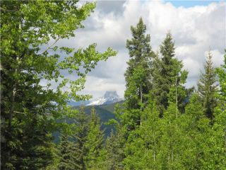 Photo 1: 265139 Jamieson Road: Rural Bighorn M.D. Residential Detached Single Family for sale : MLS®# C3620843