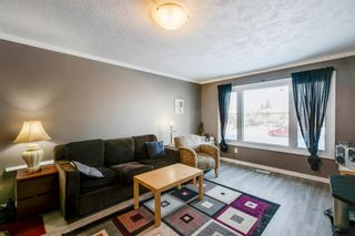Photo 2: 168 Dover Meadow Close SE in Calgary: Dover Detached for sale : MLS®# A1082428