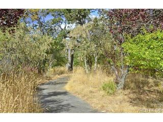 Photo 13: 4041 Nelthorpe St in VICTORIA: SE High Quadra Land for sale (Saanich East)  : MLS®# 685817