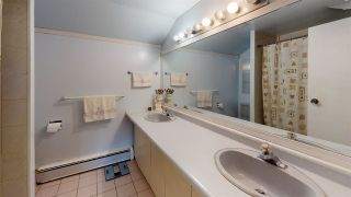 Photo 22: 3418 E 53RD Avenue in Vancouver: Killarney VE House for sale (Vancouver East)  : MLS®# R2561102