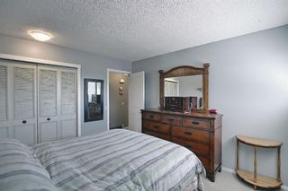 Photo 10: 2735 41A Avenue SE in Calgary: Dover Detached for sale : MLS®# A1082554