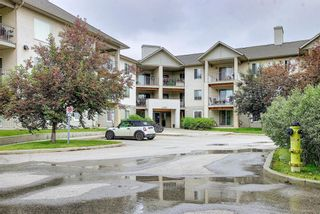 Main Photo: 217 4000 Citadel Meadow Point NW in Calgary: Citadel Apartment for sale : MLS®# A1126730