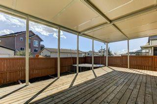 Photo 34: 158 Saddlemont Boulevard NE in Calgary: Saddle Ridge Detached for sale : MLS®# A1145866