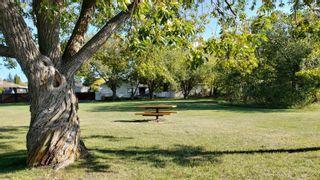 Photo 48: 1114 MOYER Drive: Sherwood Park House for sale : MLS®# E4254952
