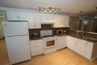 Photo 18: 7348 35 Avenue NW in Calgary: Bowness House for sale : MLS®# C4144781
