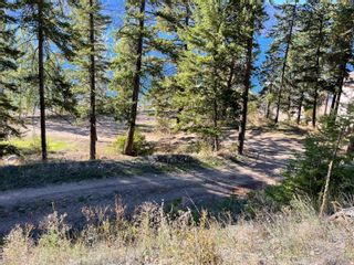 Photo 3: #1 9990 Eastside Road, in Vernon: Vacant Land for sale : MLS®# 10241515