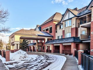 Photo 49: 1119 48 Inverness Gate SE in Calgary: McKenzie Towne Apartment for sale : MLS®# A1083158
