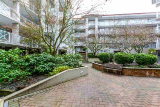 Photo 2: 203 528 ROCHESTER AVENUE in Coquitlam: Coquitlam West Condo for sale : MLS®# R2145089