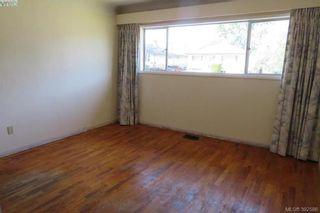 Photo 10: 1849 Carnarvon St in VICTORIA: SE Camosun House for sale (Saanich East)  : MLS®# 789064