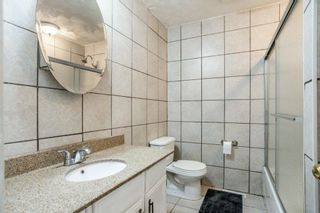 Photo 23: 42 STIRLING Road in Edmonton: Zone 27 House for sale : MLS®# E4252891