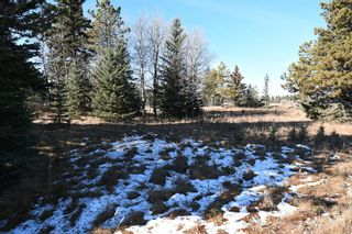Photo 29: 20.02 Acres +/- NW of Cochrane in Rural Rocky View County: Rural Rocky View MD Land for sale : MLS®# A1065950
